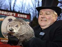 Groundhog-Punxsutawney-Phil