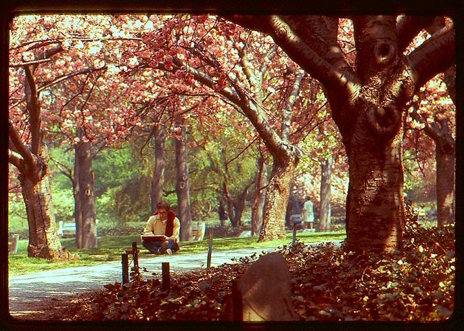 Prospect Park 1969