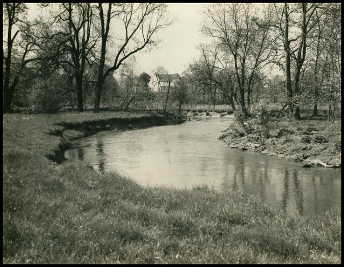 Creek11