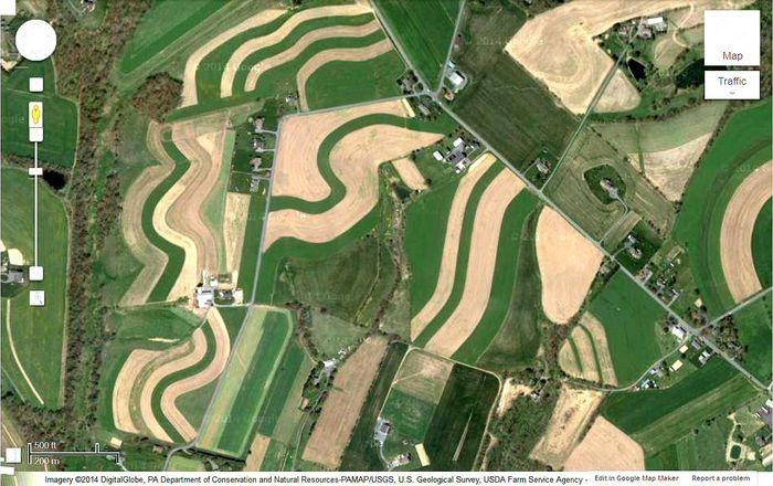 Several Farms