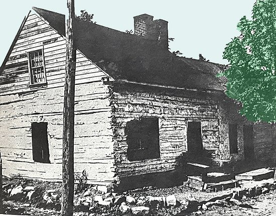 Log House-01733-13